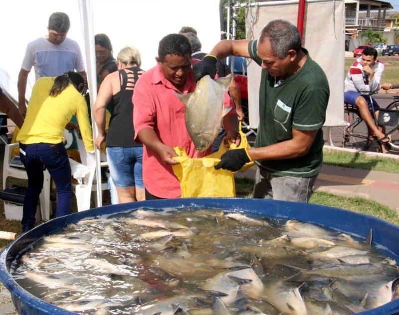 Feira do Peixe Vivo será montada em nove pontos da cidade
